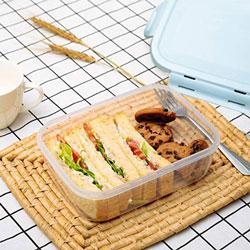 Caja plastica con tapa hermetica para la conservacion de alimentos